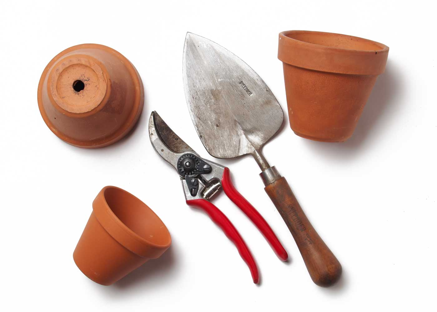 Hobby-related gifts - like a gardening tool or two - get high marks. Don't forget the gift receipt though!