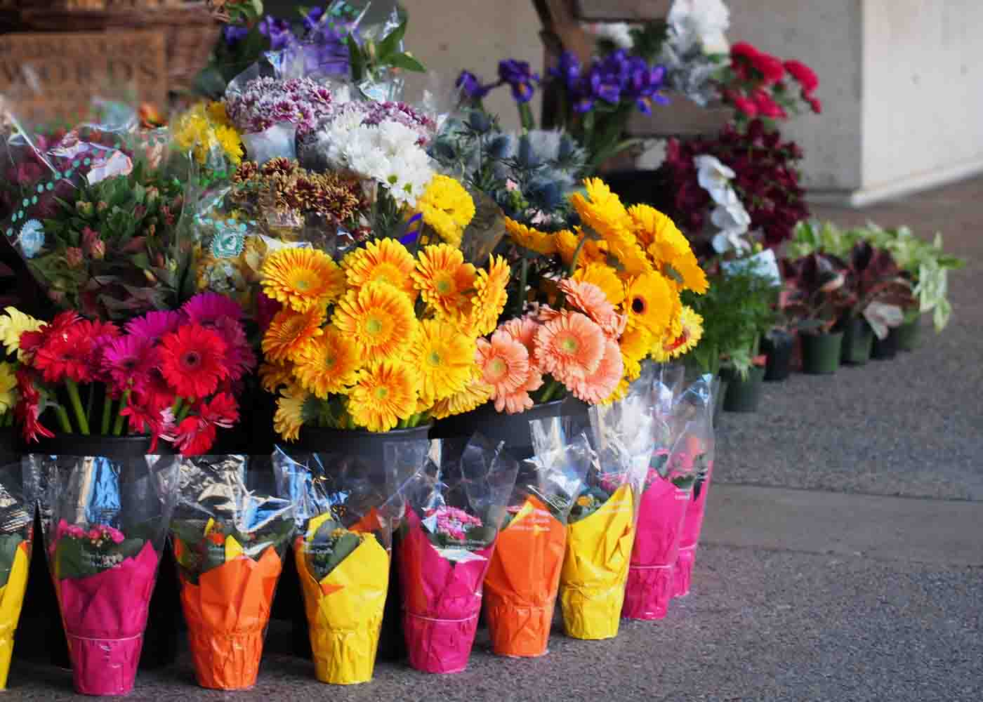 A sidewalk display of flowers in front of a florist's shop.